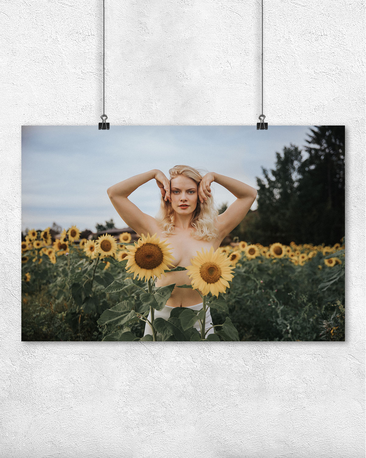 Poster - Sunflowers - NZUP-004-05